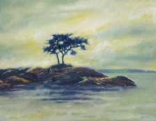 Galiano Oaks. oil. 12x16. $180