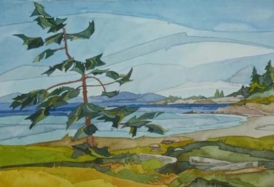 Hornby-Island-Fir-wb