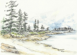 Gabriola. w/c, pencil and ink. 8x11. $150